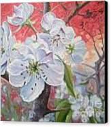 Cherry In Blossom Red Canvas Print by Andrei Attila Mezei