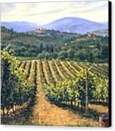 Chianti Vines Canvas Print