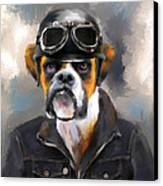 Chic Boxer Aviator Canvas Print by Jai Johnson