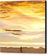 Chicken Farm Sunset 1 Canvas Print by James BO  Insogna