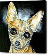 Chihuahua Angel Canvas Print by Jay  Schmetz