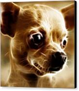 Chihuahua Dog - Electric Canvas Print by Wingsdomain Art and Photography