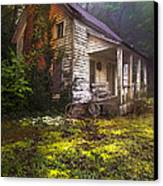 Childhood Dreams Canvas Print by Debra and Dave Vanderlaan