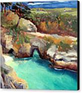 China Cove Point Lobos Canvas Print