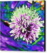 Chive Canvas Print by Jo Ann