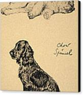 Chow And Spaniel, 1930, Illustrations Canvas Print by Cecil Charles Windsor Aldin