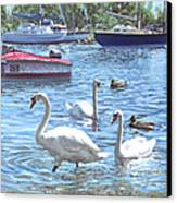 Christchurch Harbour Swans And Boats Canvas Print by Martin Davey