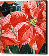 Christmas Poinsettia Magic Canvas Print