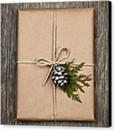 Christmas Present  Canvas Print by Elena Elisseeva