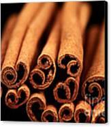 Cinnamon Sticks Canvas Print