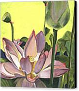 Citron Lotus 2 Canvas Print by Debbie DeWitt