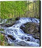 Clay Creek Falls Canvas Print by Bob Jackson