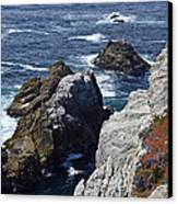 Cliffs And Coastline At California's Point Lobos State Natural Reserve Canvas Print by Bruce Gourley