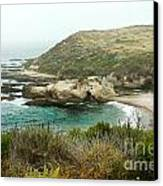 Cliffs Over Montana De Oro California Canvas Print by Artist and Photographer Laura Wrede