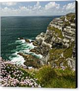 Cliffs Of Kerry Ireland Canvas Print by Dick Wood