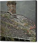 Climbing Roses Canvas Print by Ron Sanford