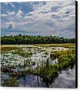 Cloud Reflection In Maine Marsh Canvas Print by Jason Brow