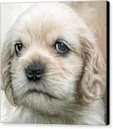 Cocker Pup Portrait Canvas Print
