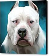 Cold As Ice- Pit Bull By Spano Canvas Print by Michael Spano