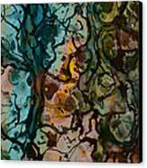 Color Abstraction Xvi Canvas Print by David Gordon