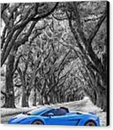 Color Your World - Lamborghini Gallardo Canvas Print by Steve Harrington