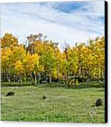 Colorado Fall Panorama Canvas Print by Baywest Imaging