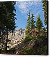 Colorado Mountain Hike Canvas Print by Michael J Bauer