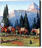 Colorado Outfitter Canvas Print by Randy Follis