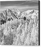 Colorado Rocky Mountain Autumn Beauty Bw Canvas Print