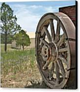 Colorado - Where The Columbines Grow Canvas Print by Christine Till