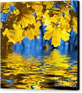 Colorful Autumn Leaves Canvas Print by Boon Mee