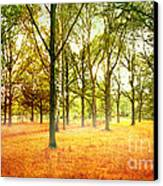 Colors Cool Canvas Print by Boon Mee