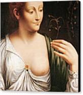Columbine Canvas Print by Leonardo da Vinci