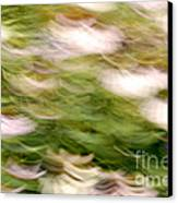 Coneflowers In The Breeze Canvas Print by Paul W Faust -  Impressions of Light