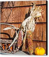 Corn Canvas Print by Guy Whiteley