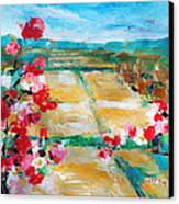 Cosmos In The Field 2 Canvas Print by Becky Kim