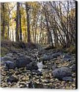 Cottonwood Creek Near Deer Lodge Montana Canvas Print