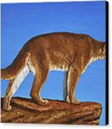 Cougar Cliff Canvas Print