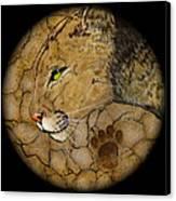 Cougar Canvas Print by Ethan  Foxx