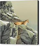 Cougar Perch Canvas Print