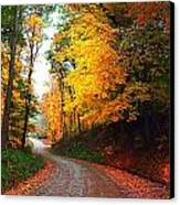 Country Autumn Gravel Road Canvas Print by Julie Dant