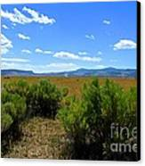 Country Boy  Canvas Print by Tim Rice