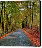 Country Lane In Autumn Canvas Print