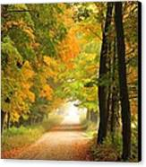 Country Road In Autumn Canvas Print by Terri Gostola