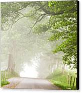 Country Road In The Fog Canvas Print