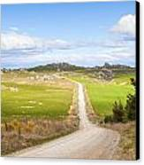 Country Road Otago New Zealand Canvas Print