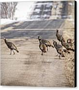 County Road Crew Canvas Print by Thomas Young