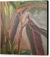 Courtyard Bananas Canvas Print by Lilibeth Andre