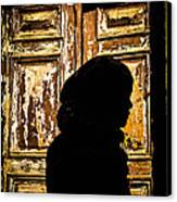 Covered Silhouette Canvas Print by Joshua Van Lare