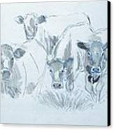 Cow Drawing Canvas Print by Mike Jory